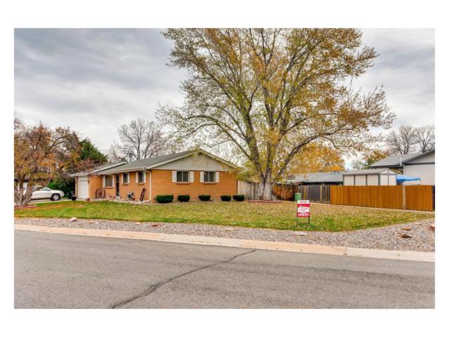 4662 S Badger Court, Littleton, CO 80127 (#4464636) :: The Peak Properties Group