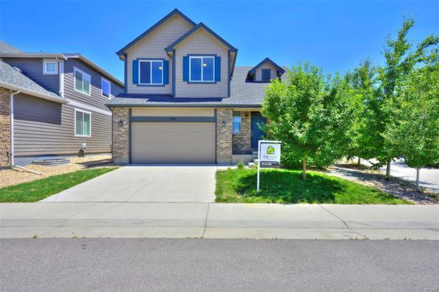 1252 S Wabash Street, Denver, CO 80247 (#4468050) :: Wisdom Real Estate
