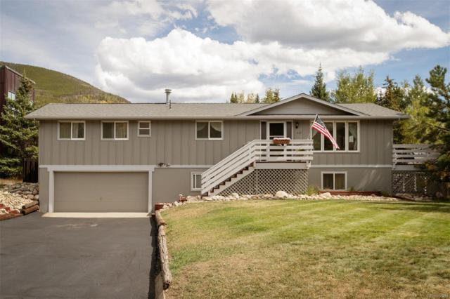 312 Alpine Road, Dillon, CO 80435 (#4470294) :: Sellstate Realty Pros