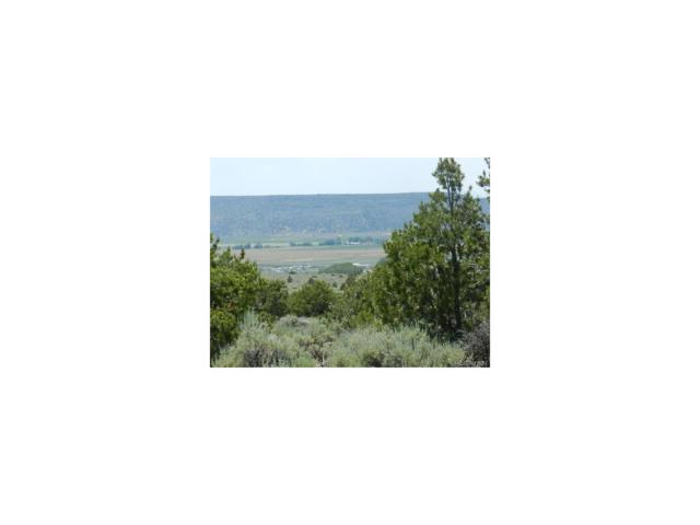Lot 4 Pine Meadows, San Luis, CO 81152 (#4476948) :: The Pete Cook Home Group