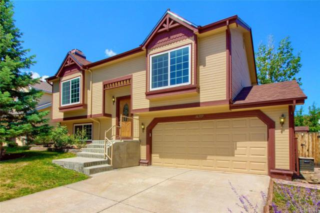 16307 Orchard Grass Lane, Parker, CO 80134 (#4477939) :: The HomeSmiths Team - Keller Williams