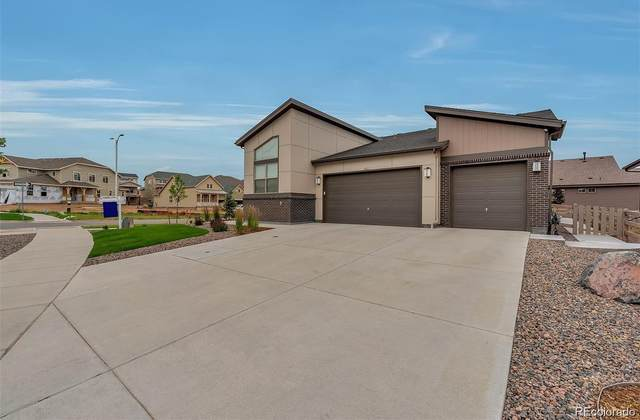 7842 Piney River Avenue, Littleton, CO 80125 (#4479048) :: The Margolis Team