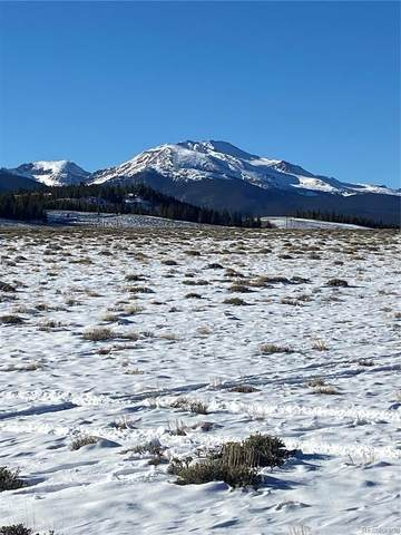 2251 Young American, Twin Lakes, CO 81251 (MLS #4479219) :: 8z Real Estate