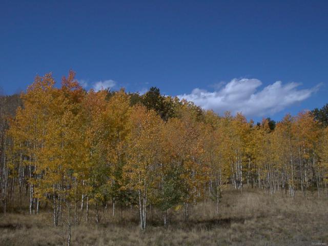 1950 Campfire Road, Hartsel, CO 80449 (MLS #4480957) :: 8z Real Estate