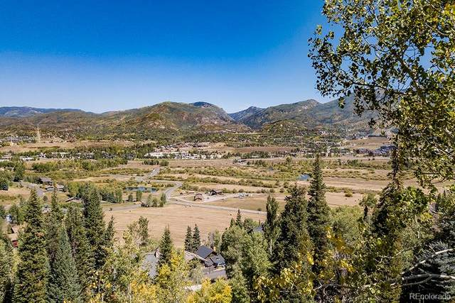 36879 Tree Haus Drive, Steamboat Springs, CO 80487 (#4481284) :: THE SIMPLE LIFE, Brokered by eXp Realty
