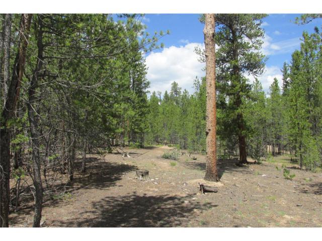 511 Birch Drive, Twin Lakes, CO 81251 (MLS #4483247) :: 8z Real Estate