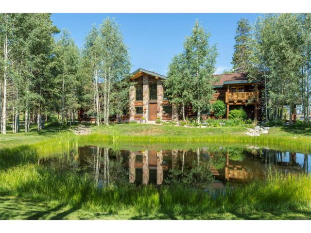 3133 Gcr 518, Fraser, CO 80442 (MLS #4483633) :: 8z Real Estate