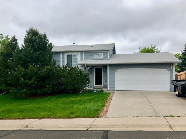 1830 E 96th Drive, Thornton, CO 80229 (#4485903) :: Sellstate Realty Pros