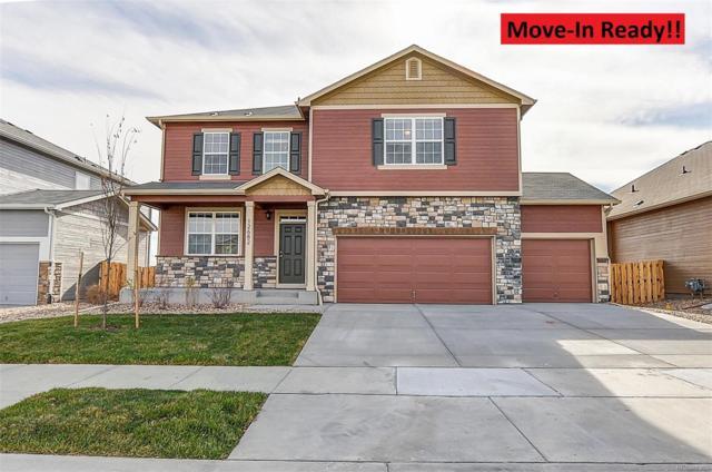 5926 Echo Park Circle, Castle Rock, CO 80104 (#4486338) :: House Hunters Colorado