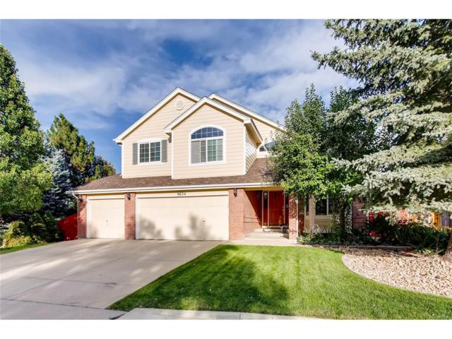 9634 Las Colinas Drive, Lone Tree, CO 80124 (#4489694) :: The Peak Properties Group