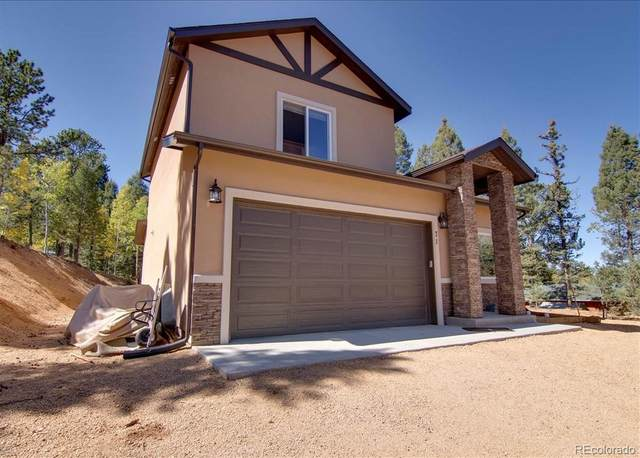 71 Mount Elbert Drive, Florissant, CO 80816 (MLS #4489857) :: 8z Real Estate