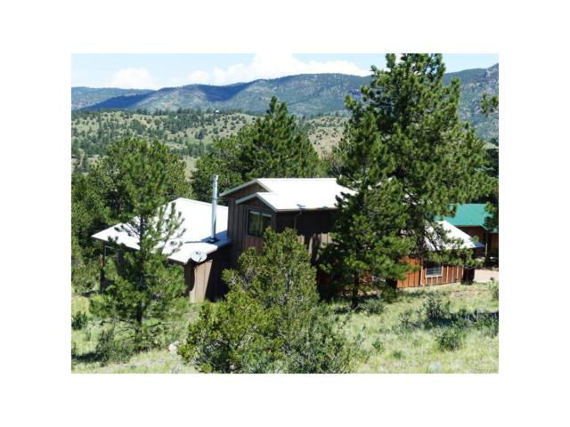 2 Ilse Loop, Westcliffe, CO 81252 (MLS #4490175) :: 8z Real Estate