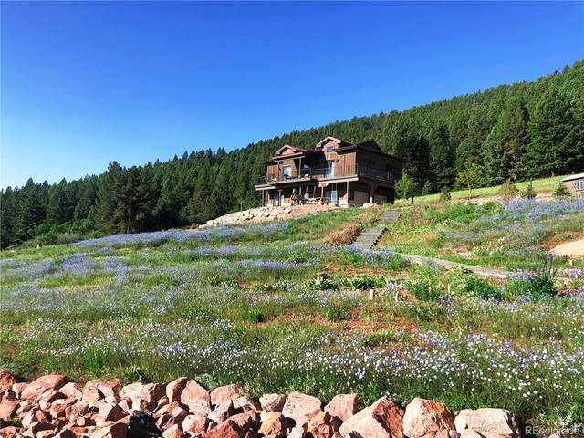 15367 Sierra Pines Lane, Larkspur, CO 80118 (#4490915) :: My Home Team