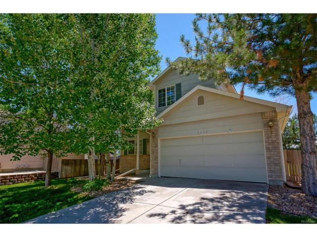 5430 E 128th Drive, Thornton, CO 80241 (#4491333) :: The Peak Properties Group