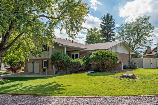 2505 S Cody Way, Lakewood, CO 80227 (MLS #4498353) :: 8z Real Estate
