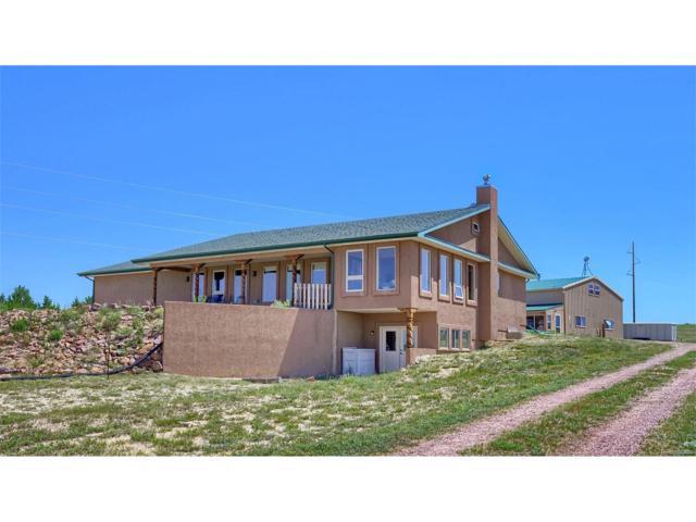 21526 Blue Springs View, Peyton, CO 80831 (MLS #4500769) :: 8z Real Estate