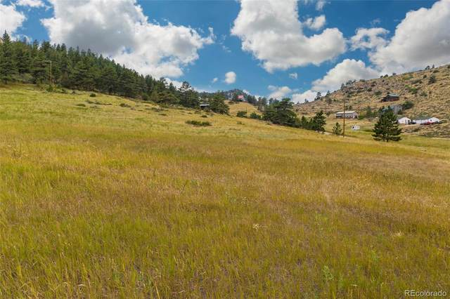 671 Eiger Road, Livermore, CO 80536 (#4500885) :: The HomeSmiths Team - Keller Williams