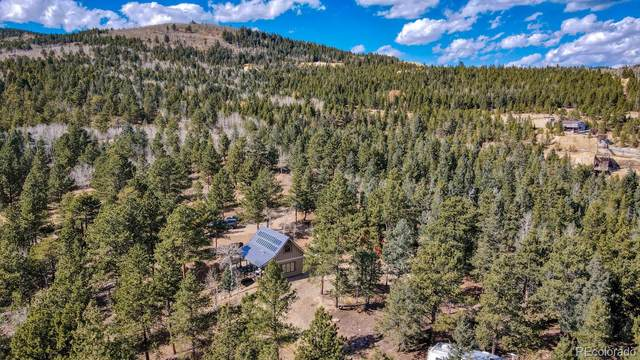 1030 Russell Gulch Road, Central City, CO 80427 (#4503868) :: The FI Team