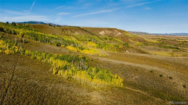 13000 County Road 7, Yampa, CO 80483 (#4507328) :: Hudson Stonegate Team