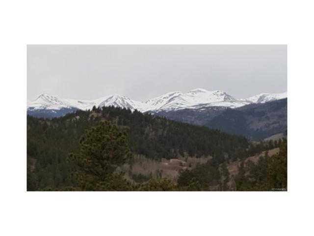 York Gulch Road, Idaho Springs, CO 80452 (#4509824) :: Wisdom Real Estate