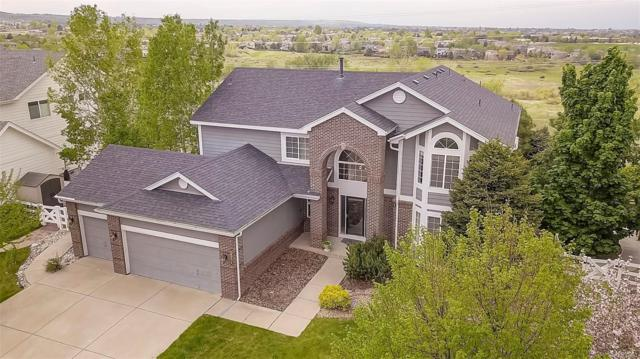 10375 Weeden Place, Lone Tree, CO 80124 (#4512394) :: Briggs American Properties