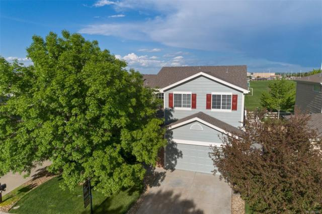 13628 Plaster Circle, Broomfield, CO 80023 (#4513065) :: The Pete Cook Home Group