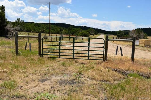 Heffer, Walsenburg, CO 81089 (#4514798) :: iHomes Colorado
