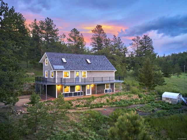 1233 County Road 68, Nederland, CO 80466 (#4514816) :: The Dixon Group