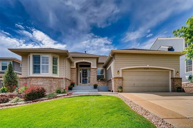 8392 Winter Berry Drive, Castle Pines, CO 80108 (MLS #4519599) :: 8z Real Estate