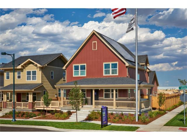 5672 W 96th Avenue, Westminster, CO 80020 (MLS #4521254) :: 8z Real Estate