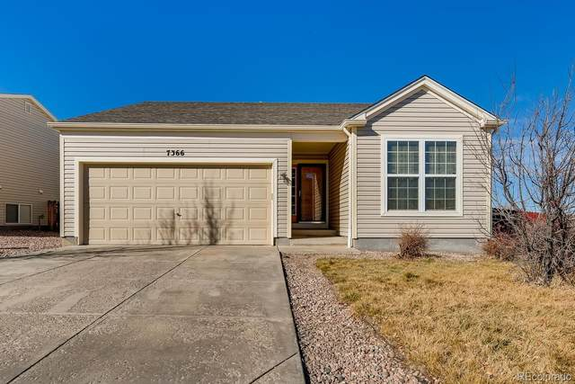 7366 Brush Hollow Drive, Fountain, CO 80817 (#4521653) :: Chateaux Realty Group