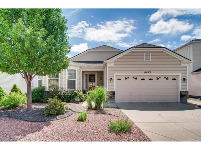 6463 Summer Grace Street, Colorado Springs, CO 80923 (MLS #4525749) :: 8z Real Estate
