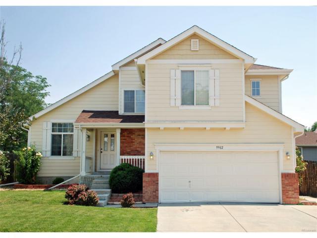 9902 Vine Street, Thornton, CO 80229 (MLS #4527743) :: 8z Real Estate