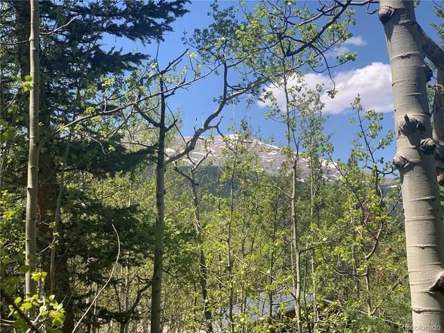 000 Aspen St, Alma, CO 80420 (#4528322) :: The Griffith Home Team