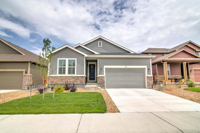 3382 Caprock Way, Castle Rock, CO 80104 (#4529253) :: The Tamborra Team