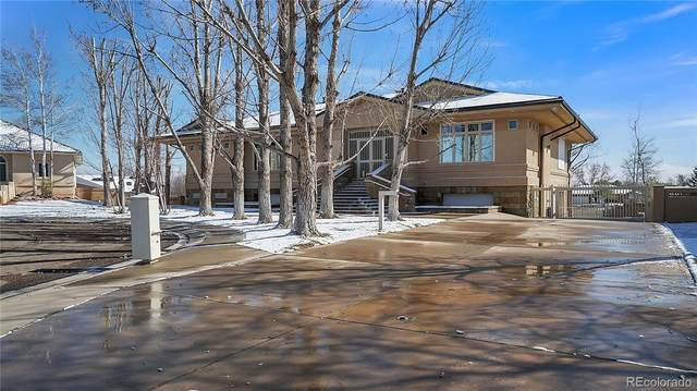6 Mirada Court, Pueblo, CO 81005 (#4529321) :: The Brokerage Group