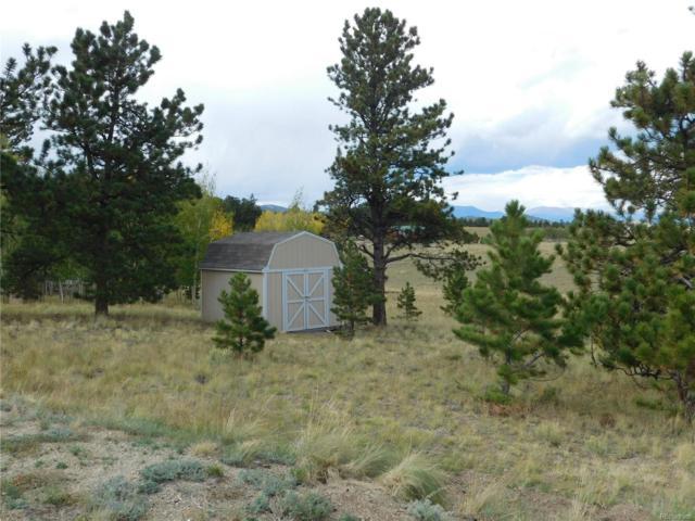 375 Angus Circle, Hartsel, CO 80449 (MLS #4529544) :: 8z Real Estate