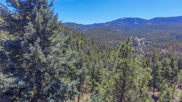 7128-1 Lodgepole Court, Evergreen, CO 80439 (MLS #4529553) :: 8z Real Estate