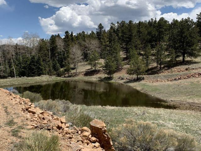 Eagle Springs Road, Westcliffe, CO 81252 (#4532239) :: The DeGrood Team