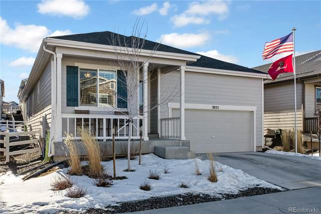 3975 John Avenue, Castle Rock, CO 80104 (#4532538) :: The Dixon Group