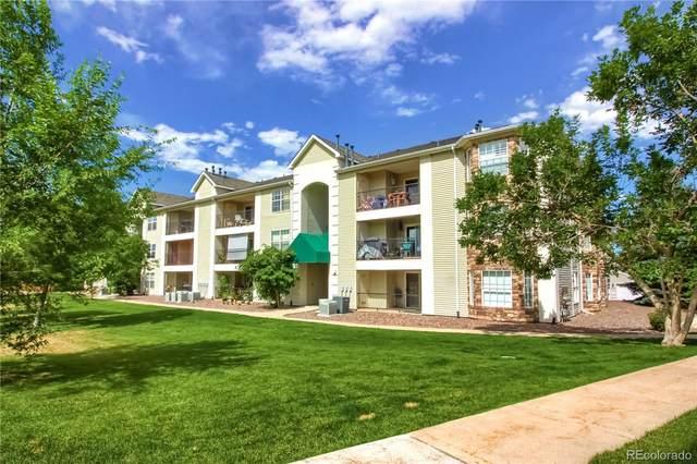 12304 W Cross Drive #203, Littleton, CO 80127 (MLS #4533251) :: Find Colorado