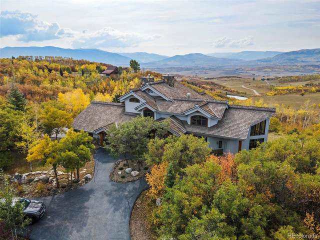 28405 Skyline Drive, Steamboat Springs, CO 80487 (#4534247) :: Finch & Gable Real Estate Co.