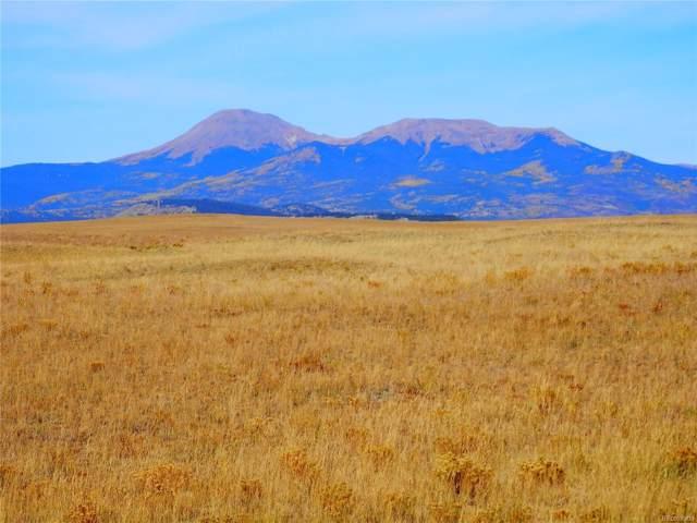 1270 Blackfoot Road, Hartsel, CO 80449 (#4536719) :: Wisdom Real Estate