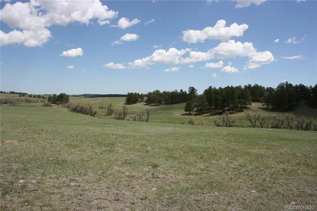 0000 County Road 94, Elbert, CO 80106 (MLS #4546993) :: 8z Real Estate