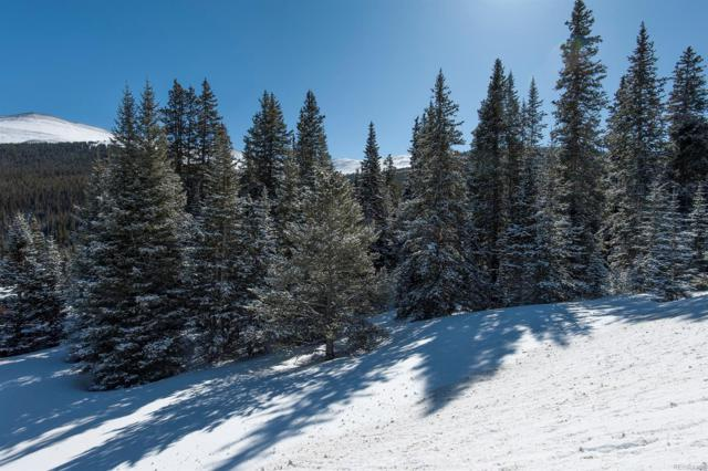 1630 State Hwy 9, Breckenridge, CO 80424 (#4548418) :: Hometrackr Denver