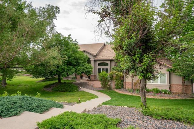 16169 Mountain Bluebird Way, Morrison, CO 80465 (MLS #4548950) :: Kittle Real Estate