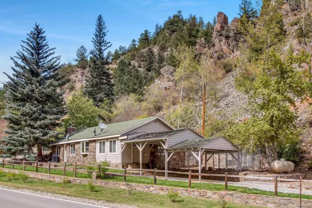 4364 Colorado 103, Idaho Springs, CO 80452 (#4551894) :: HomePopper