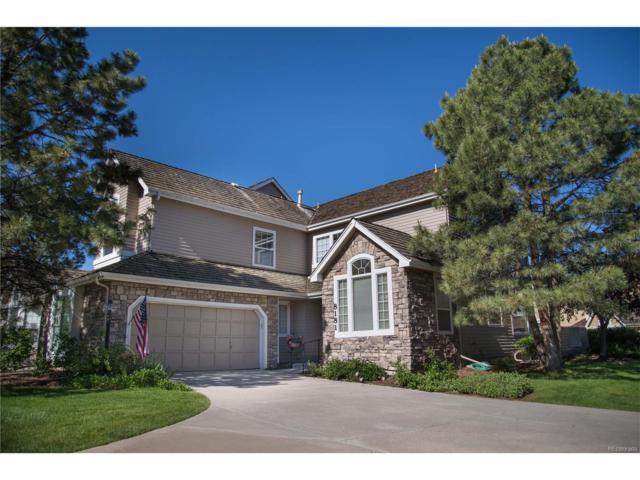 8181 S Peninsula Drive, Littleton, CO 80120 (MLS #4552544) :: 8z Real Estate