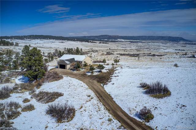 18090 Connestoga Court, Peyton, CO 80831 (#4552722) :: The Artisan Group at Keller Williams Premier Realty