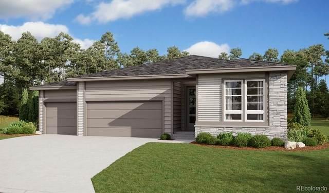 4063 Castle Vista Drive, Castle Rock, CO 80104 (#4553611) :: Sultan Newman Group